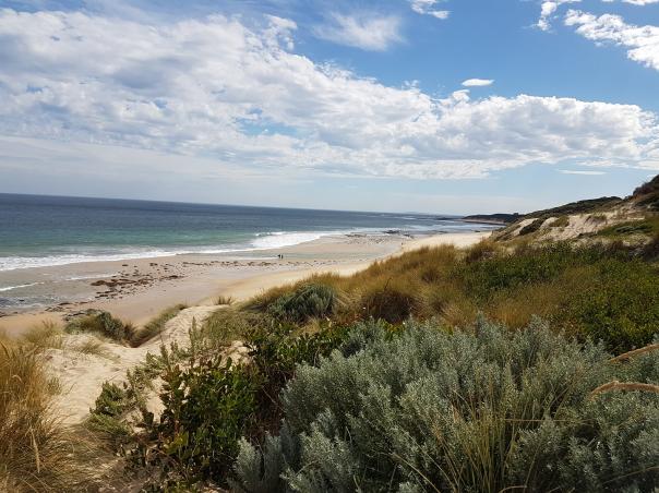 Cape Patterson beach